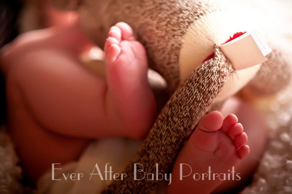 Baby Portrait Session