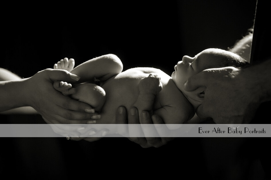 newborn photographer northern va ashburn village va