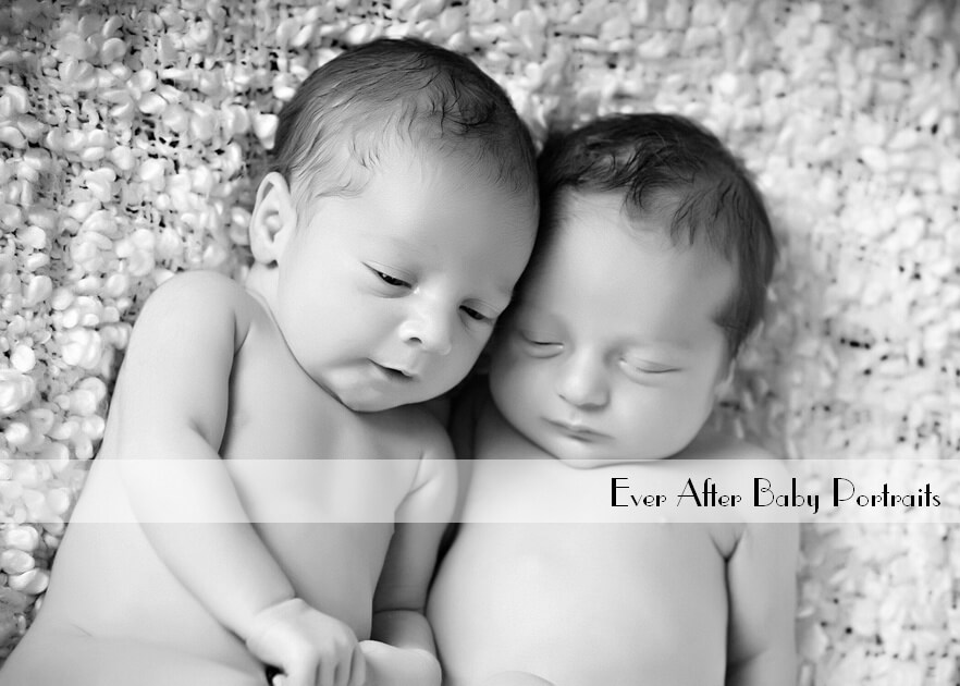 newborn photographer purcellville va